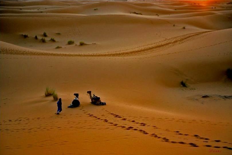 Pegadas na reia do deserto