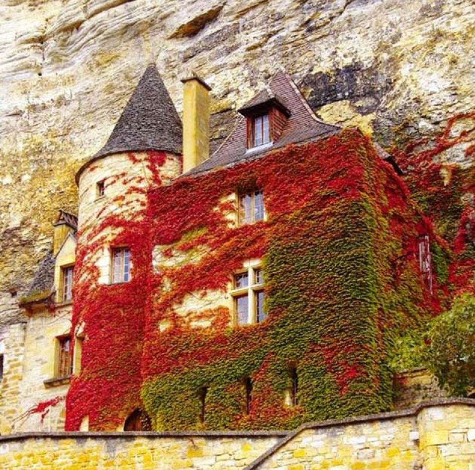 Casa na rocha França