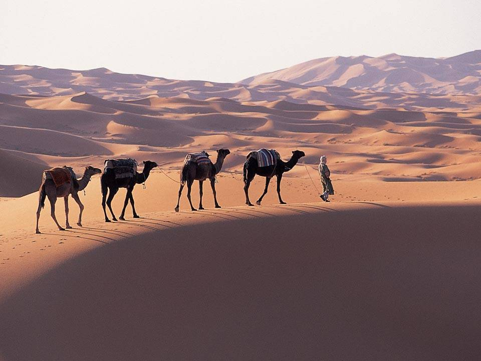Passeando no deserto