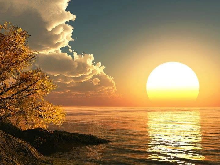 Sol reflete na água