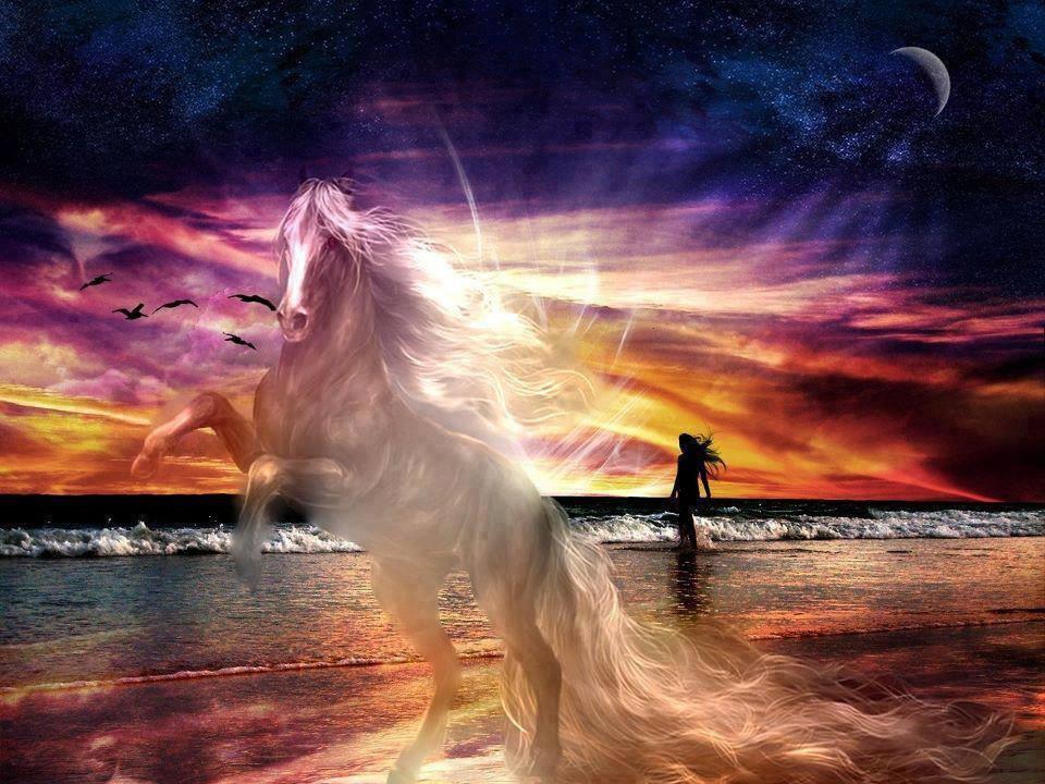 Cavalo no mar