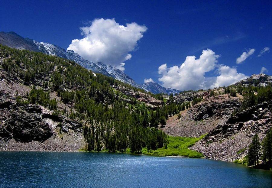 Lagoa montanha e arvores
